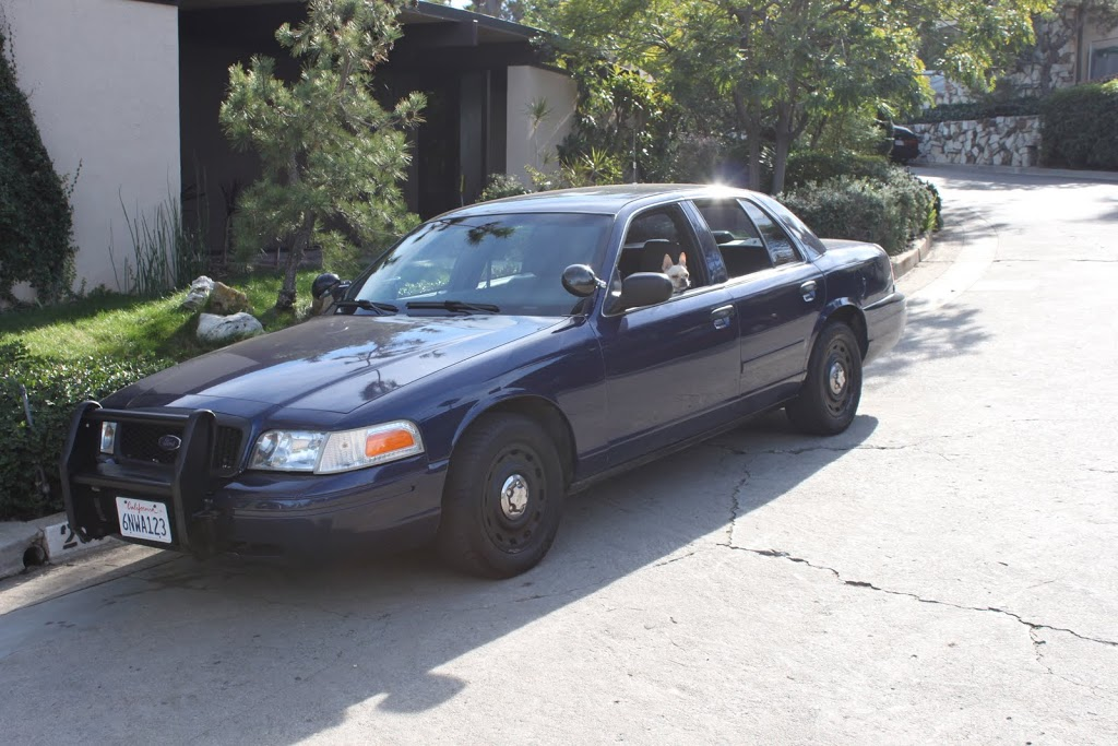 New Daily Driver - P71 Crown Vic Detective car